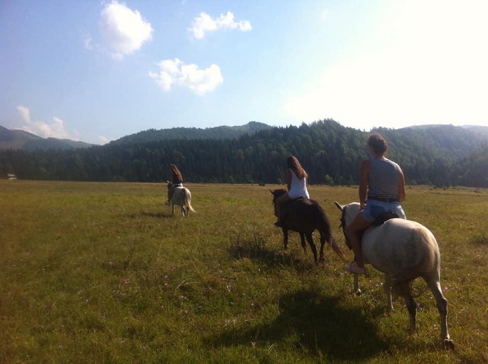 kamp-sutjeska-jahanje-konja